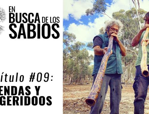 EN BUSCA DE LOS SABIOS #9: Leyendas y Didjeridoo